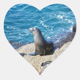Galapagos Fur Seal Heart Sticker