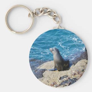 Galapagos Fur Seal Keychain