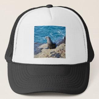 Galapagos Fur Seal Trucker Hat