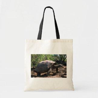 Galapagos Giant Tortoise Dome-Shaped type walkin Bag