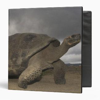 Galapagos Giant Tortoise Geochelone Vinyl Binders