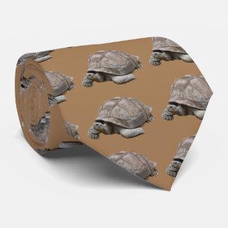 Galápagos giant tortoise neck tie