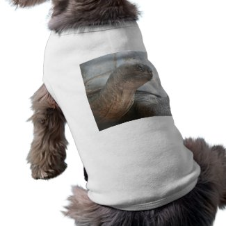 Galápagos giant tortoise photograph petshirt