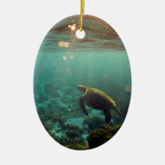 Galapagos green lagoon sea turtle underwater ceramic ornament
