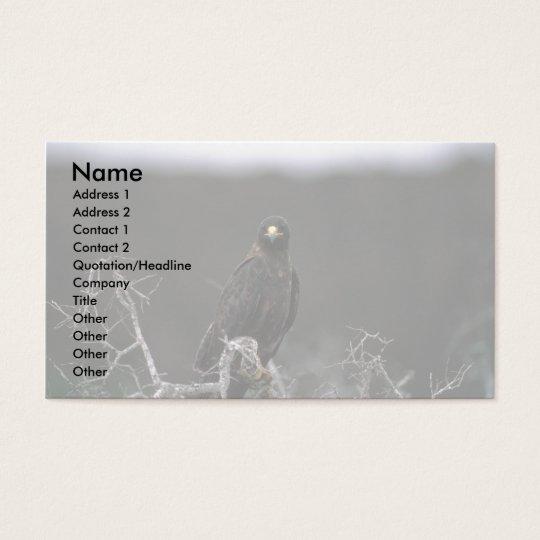 Galapagos Hawk Business Card