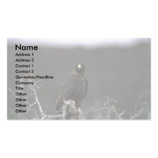 Galapagos Hawk Business Card Template