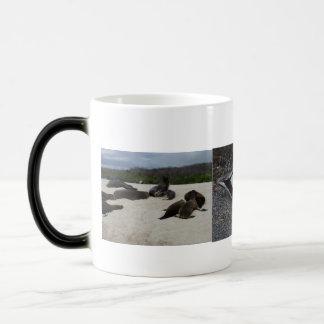 Galapagos Iguanas, Seals, and birds Magic Mug