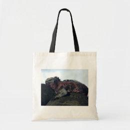 Galápagos Islands Black Iguana Tote Bag