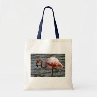 Galapagos Islands Flamingo Tote Bag