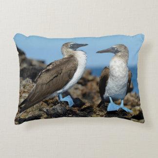 Galapagos Islands, Isabela Island Accent Pillow