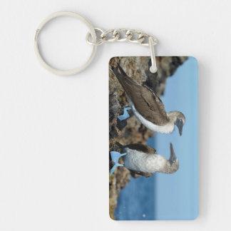 Galapagos Islands, Isabela Island Double-Sided Rectangular Acrylic Keychain