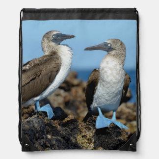 Galapagos Islands, Isabela Island Drawstring Backpacks