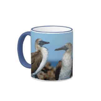 Galapagos Islands, Isabela Island Ringer Mug