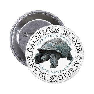 Galapagos Islands Tortoise Button