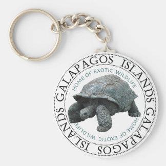 Galapagos Islands Tortoise Keychain