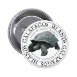 Galapagos Islands Tortoise Pinback Buttons