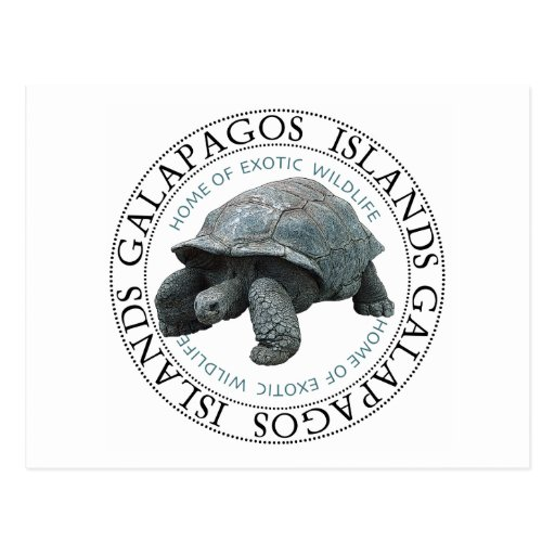 Galapagos Islands Tortoise Post Cards