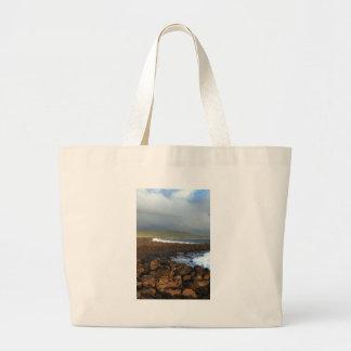 Galapagos Islands volcanic coastline Canvas Bags