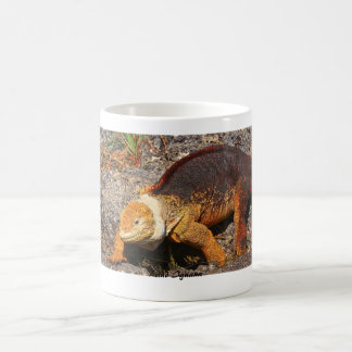 Galapagos Land Iguana Classic White Coffee Mug
