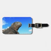 Galapagos marine iguana sunbathing tag for luggage