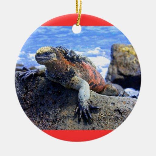 Galapagos Ornament
