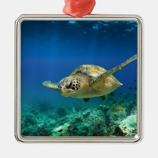 Galapagos paradise green sea turtle underwater metal ornament