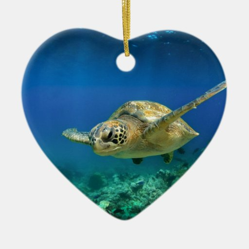 Galapagos paradise green sea turtle underwater christmas ornaments