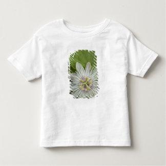 Galapagos Passion Flower Passiflora foetida Toddler T-shirt
