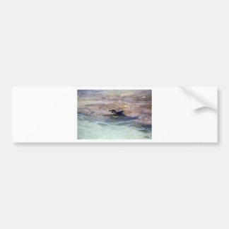 Galapagos penguin swimming in ocean bumper sticker