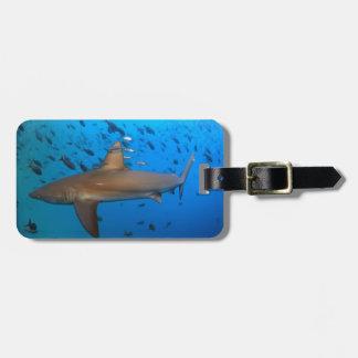 Galapagos reef shark bag tag