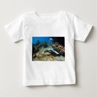 Galapagos sea lion blowing bubbles tee shirt