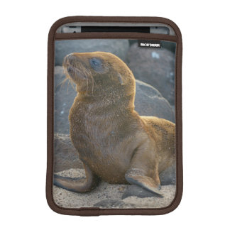 Galapagos sea lion iPad mini sleeve