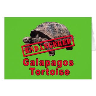 Galapagos Tortoise  Endangered Art Tshirts Card