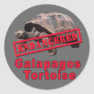 Galapagos Tortoise  Endangered Art Tshirts Classic Round Sticker