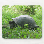 Galápagos Tortoise Mousepad