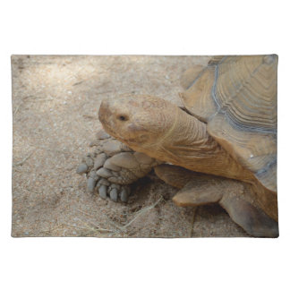galapagos tortoise reptile animal cloth placemat