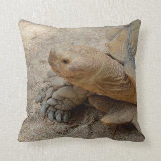 galapagos tortoise reptile animal throw pillow