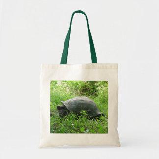 Galápagos Tortoise Tote Bag