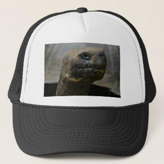 Galapagos Tortoise Trucker Hat
