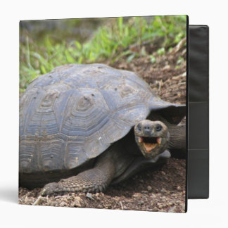 Galapagos Tortoise with mouth open 3 Ring Binder