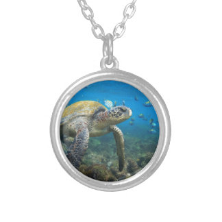 Galapagos turtles swimming in lagoon round pendant necklace