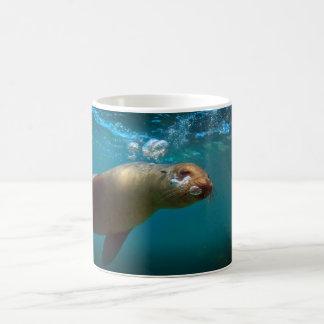 Galapagos underwater curious sea lion paradise coffee mug