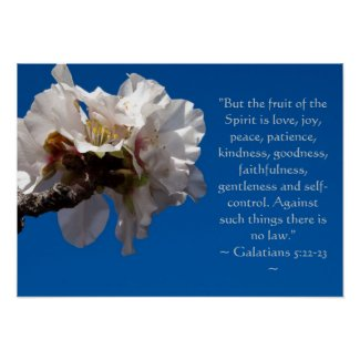 Galatians 5:22,23 Poster print