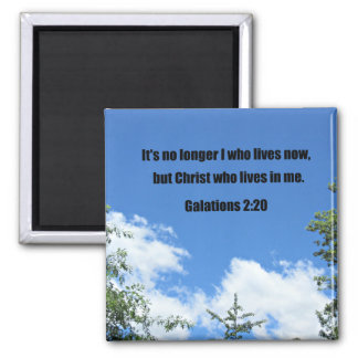 Galations 2:20 magnet
