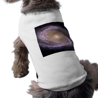 Galaxia espiral 81 más sucios camisetas mascota