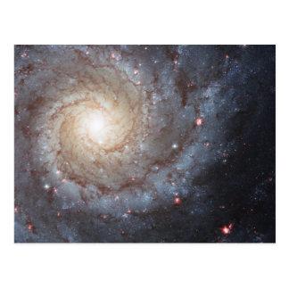 Galaxia espiral M74 Tarjetas Postales