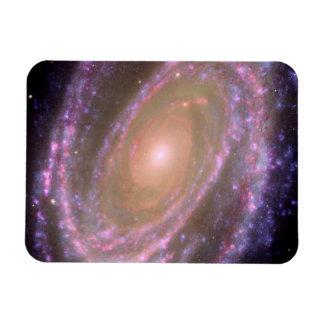 Galaxia espiral M81 Imanes