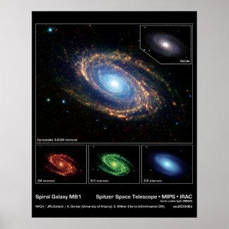 Galaxia espiral M81 - telescopio espacial de Spitz Póster