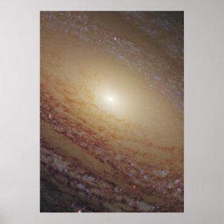 Galaxia espiral NGC 2841 Póster