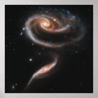 Galaxias espirales color de rosa póster
